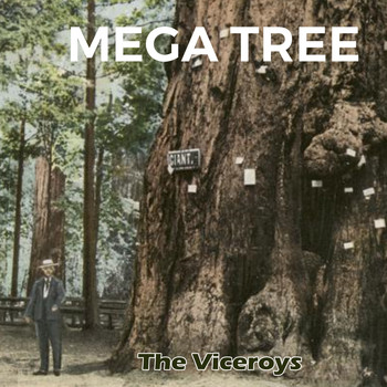 The Viceroys - Mega Tree