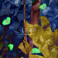 The Leap - Plastic Soup