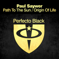 Paul Sawyer - Path to the Sun / Origin Of Life