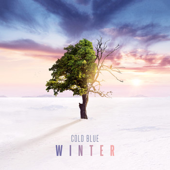 Cold Blue - Winter