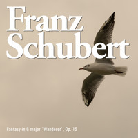 Franz Schubert - Fantasy in C major 'wanderer', op. 15 (Explicit)