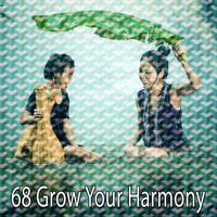 Yoga - 68 Grow Your Harmony