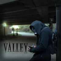 Vulture - The Valley