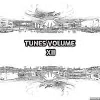 Various Artists - Tunes, Vol. XII