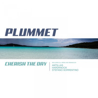 Plummet - Cherish the Day