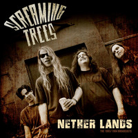 Screaming Trees - Nether Lands (Live, Acoustic)
