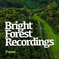 Forest - Bright Forest Recordings