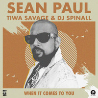 Sean Paul - When It Comes To You (DJ Spinall Remix)