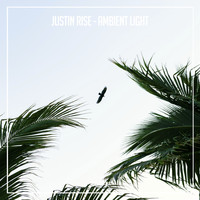 Justin Rise - Ambient Light