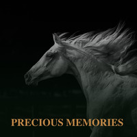 Jim Reeves - Precious Memories (Explicit)