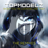 Topmodelz - When You're Looking Like That (Remixes)