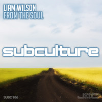 Liam Wilson - From the Soul