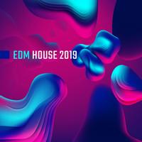 Future Sound of Ibiza, Electronic Music Zone, Chill Out 2018 - EDM House 2019: Bumpy Beats, Clubbing Music, Dance Songs, Essential Party Album