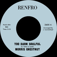 Morris Chestnut - Too Darn Soulful b/w You Don't Love Me Anymore