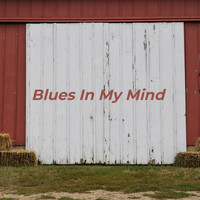 Skeets McDonald - Blues in My Mind
