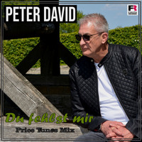 Peter David - Du fehlst mir (Price Tunes Mix)