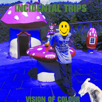 Vision Of Colour / - Incidental Trips