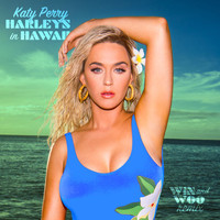 Katy Perry - Harleys In Hawaii (Win and Woo Remix)