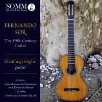 Gianluigi Giglio - The 19th-Century Guitar