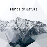 VVAA - Sounds Of Nature