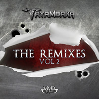 Tryambaka - The Remixes Vol. 2 (Explicit)