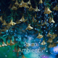 Rain Ambient - Smooth Relax Rain