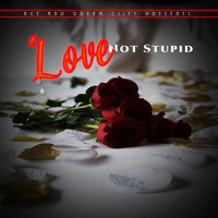 Ace - Love Not Stupid (Explicit)