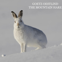 Goetz Oestlind - The Mountain Hare