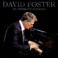 David Foster - Something To Shout About - Betty Boop (Live)