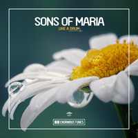 Sons of Maria - Like a Drum