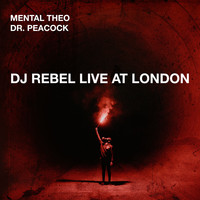 Mental Theo - DJ Rebel Live at London (Explicit)