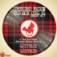 Demarkus Lewis - Are You Deep EP Remixes, Vol. 3