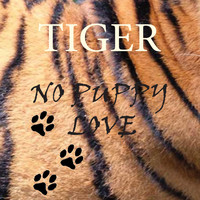 Tiger - No Puppy Love Remix