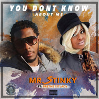 Mr Stinky featuring Bri The 1st Lady - You Dont Know Bout Me (Explicit)