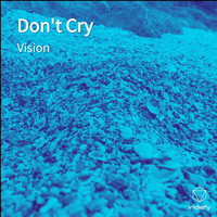 Vision - Don't Cry (Explicit)