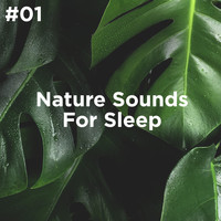 Sleep Sounds of Nature and Nature Sound Collection - #01 Nature Sounds For Sleep