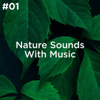 Sleep Sounds of Nature and Nature Sound Collection - #01 Nature Sounds With Music