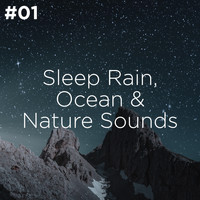Sleep Sounds of Nature and Nature Sound Collection - #01 Sleep Rain, Ocean & Nature Sounds