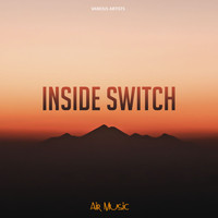 Various Artists - Inside Switch