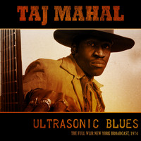 Taj Mahal - Ultrasonic Blues (Live 1974)