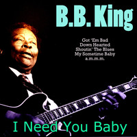B. B. King - I Need You Baby