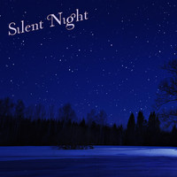 Matt Johnson - Silent Night