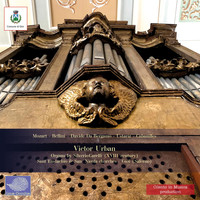 Victor Urban - Ancient Organs in Gioi