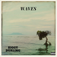 Ziggy Durling / - Waves