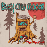 Back City Woods - Try My Luck