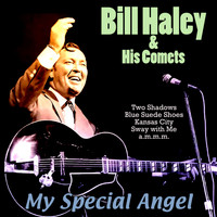 Bill Haley & His Comets - My Special Angel