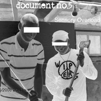 Document No. 5 - Sensory Overload