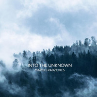 Mareks Radzevics - Into the Unknown