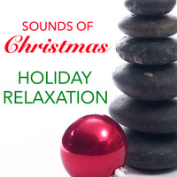 Wildlife - Sounds Of Christmas Holiday Relaxation
