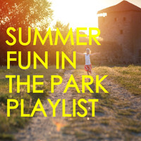 Various Aritsts - Summer Fun In The Park Playlist
